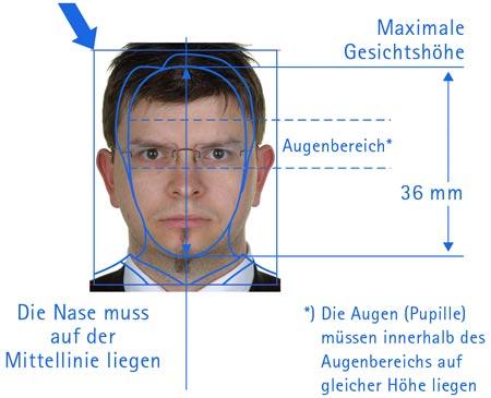 Der Westfale biometrisch vermessen